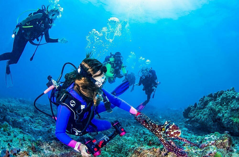 Diving Diani Beach