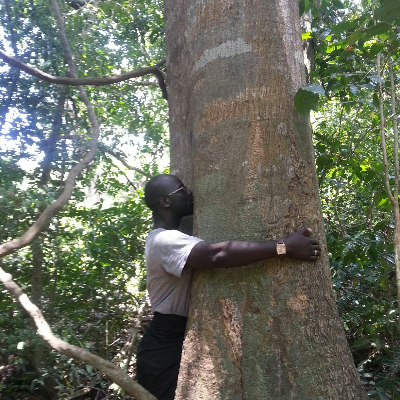 Kaya Kinodo Forest Diani